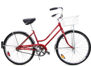 schwinn breeze