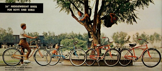 1968 schwinn panther, deluxe typhoon, typhoon and heavyduty