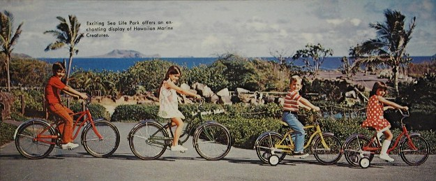 1971 schwinn bantam and pixie