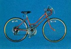 1980 schwinn deluxe varsity ten speed girls